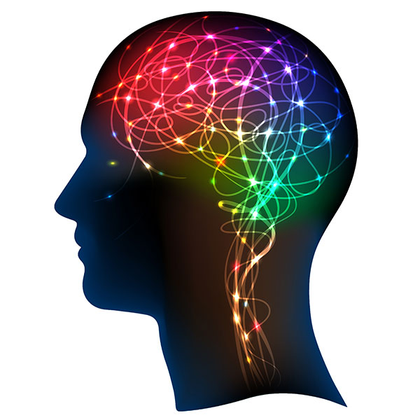brain-neurons